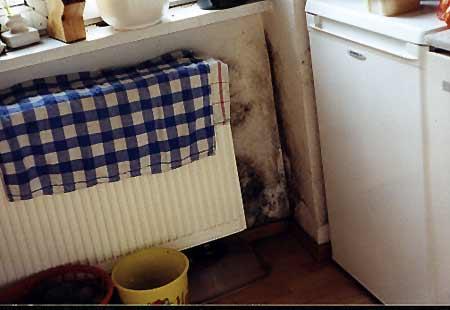 Schimmelpilze in der Wohnung durch Wäsche trocknen.